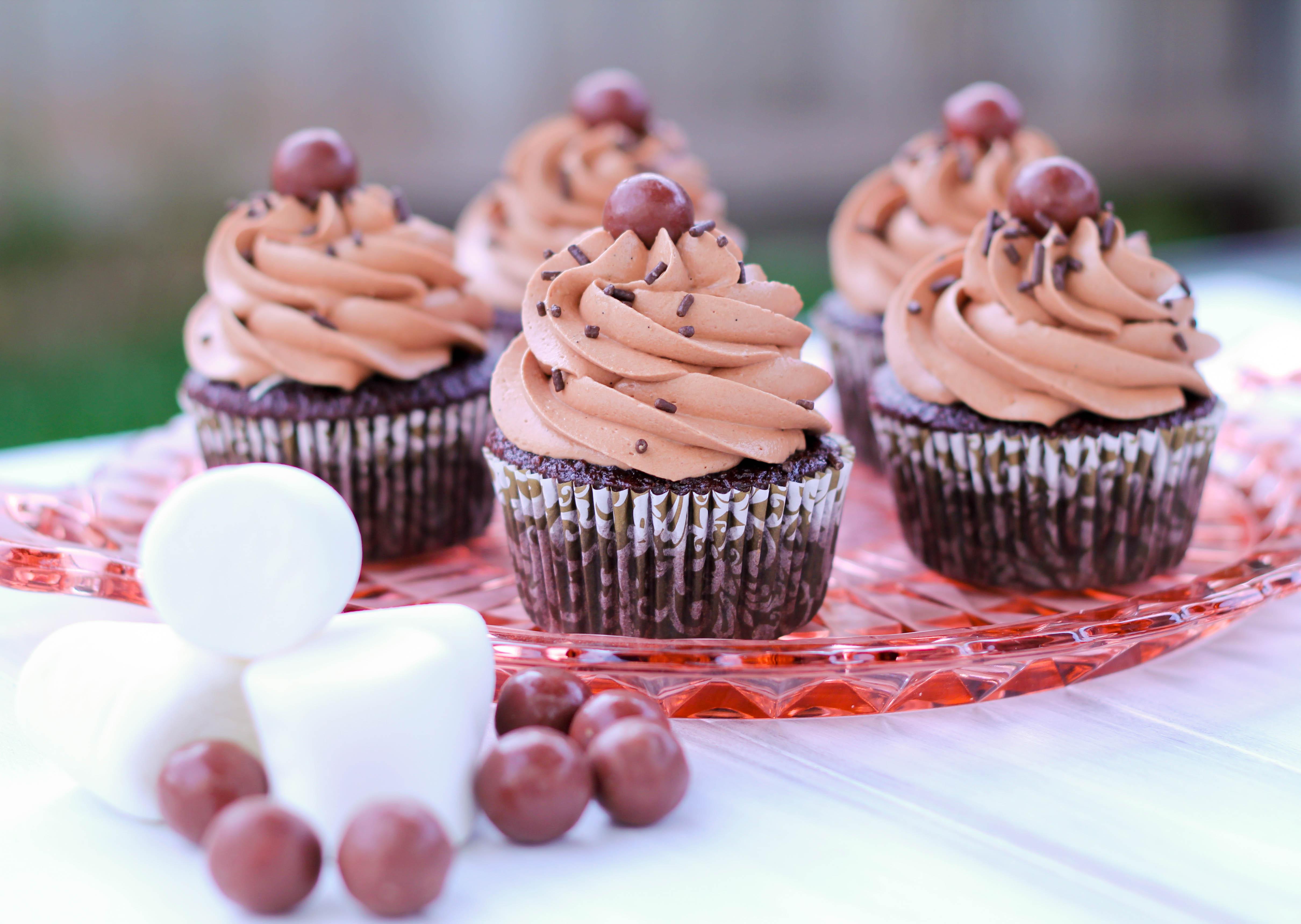 Chocolate Cupcakes: